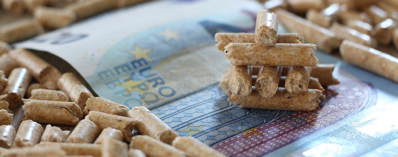 Holzpellets Fördermittel & Wissenswertes